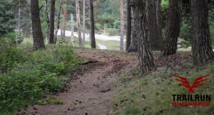 Verborgen trail
