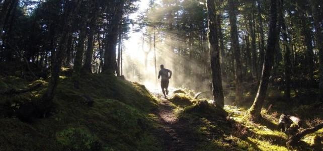 3e Editie Trailrun Brunssummerheide: 5 maart 2017
